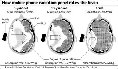 anti-radiasi-hp-02