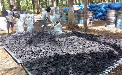 Mencari Eksporter Briket Arang Batok | Pacitan News